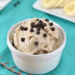 "Chocolate Chip Peanut Butter Banana Blender ""Ice Cream"""